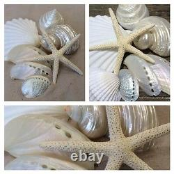 10 packs of beach wedding pearly and white shells with starfish