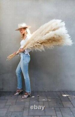 DRIED PAMPAS GRASS 4ft white decor and weddings (White, beige) 1-10 pcs Natural
