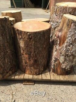 Large timber logs for forest garden projects and forest schools, rustic weddings